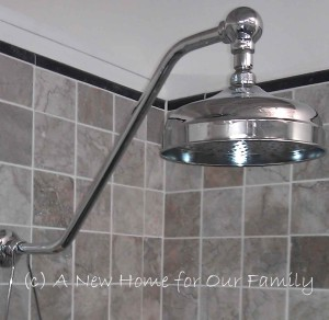 Schott's Upswept shower arm with Albany shower rose