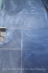 Tiles after Sealing