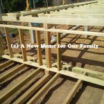 Steps to Rear Deck